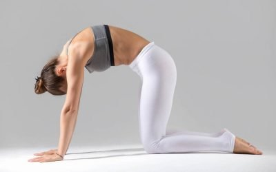 Top 6 Lower Back Stretches Used to Ease Pain